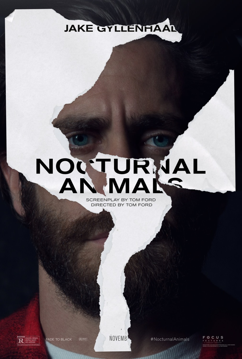 nocturnal_animals_ver3_xlg